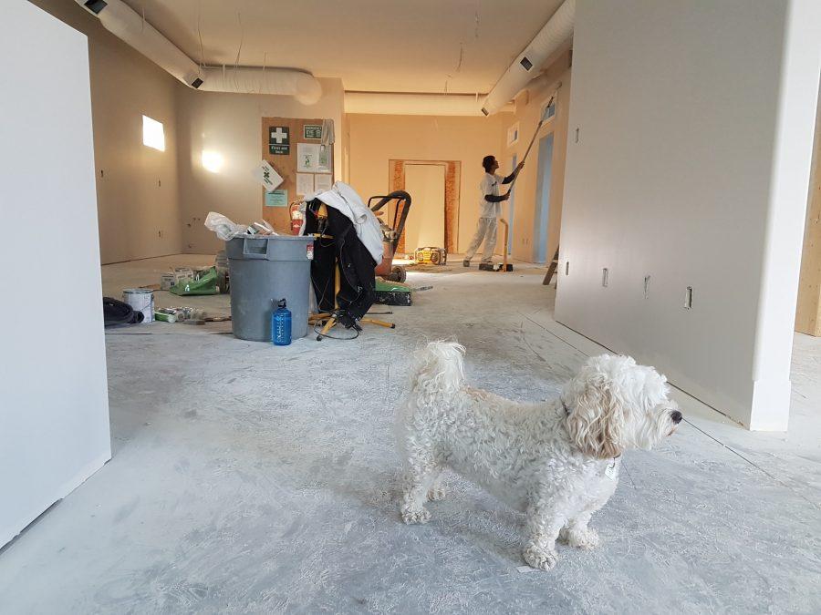 Home-Improvement-Electrical-Repair